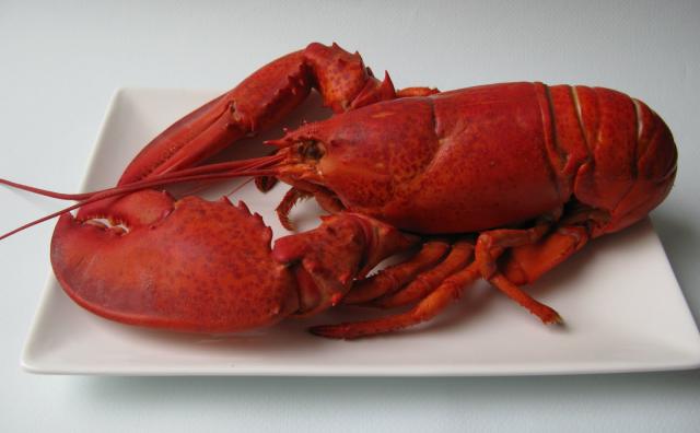 """La SFQ propose un menu tout """"homard"""""""